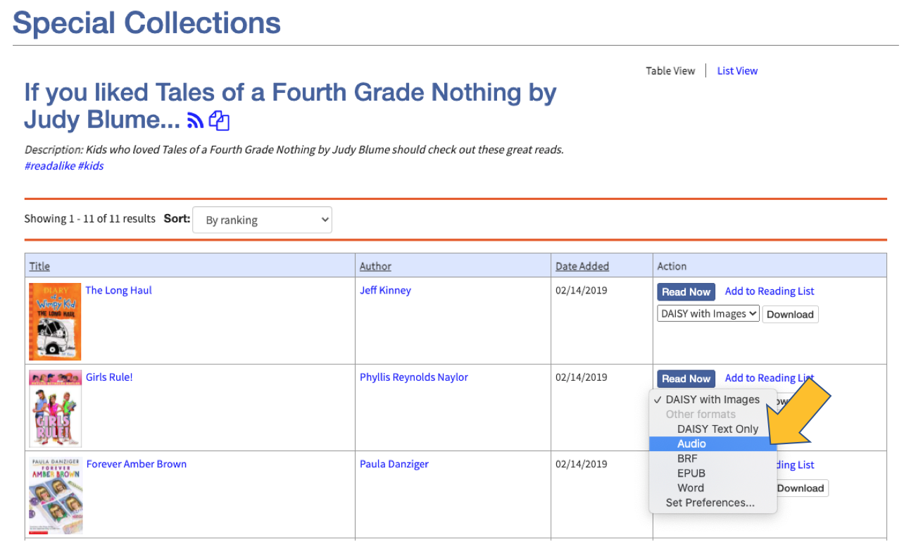 Screenshot of book list with audio selected in Download Format dropdown