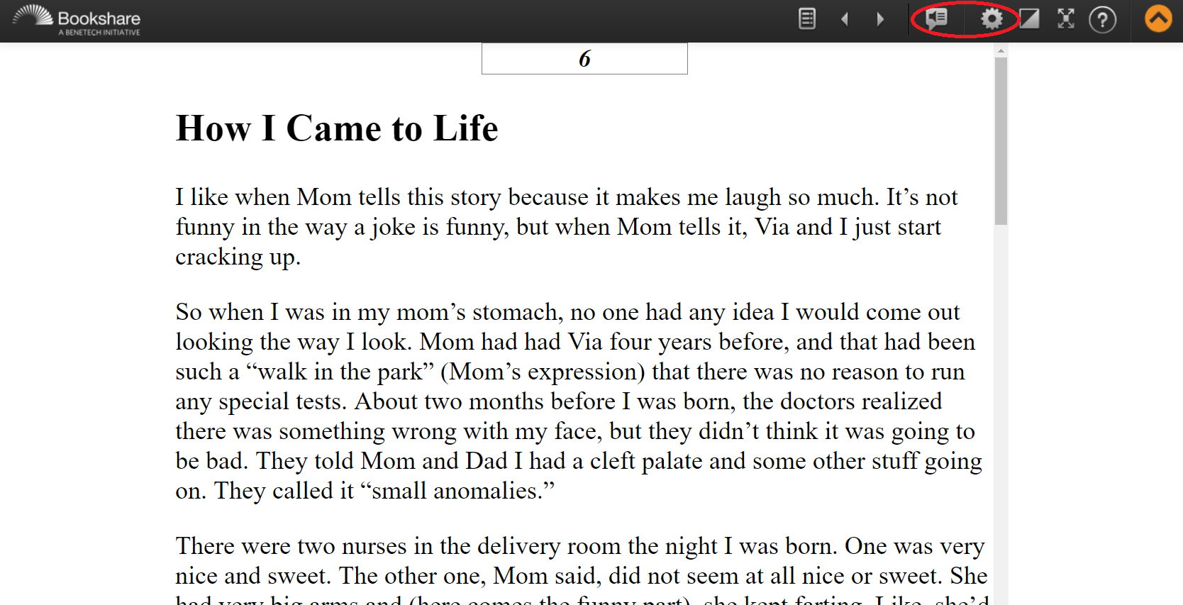 Screenshot of a book in web reader with the speaker and settings icons circled
